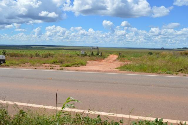 7800 hectares, Primavera do Leste-MT - Foto 5