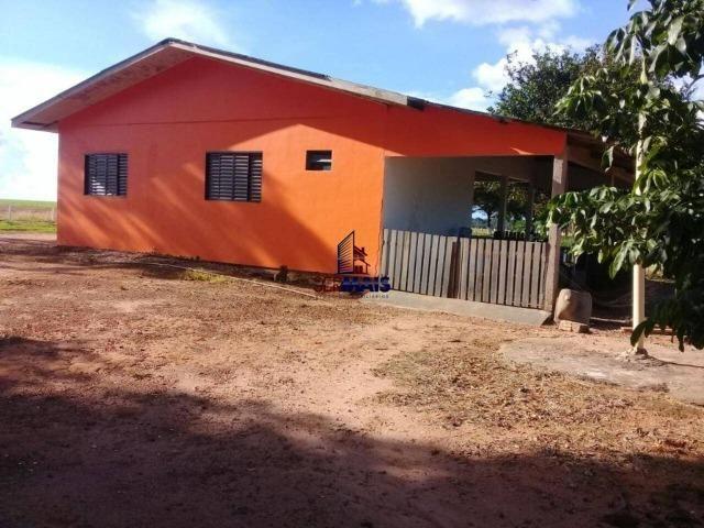 Fazenda à venda, por R$ 220.000.000 - Zona Rural - Sinop/MT - Foto 10