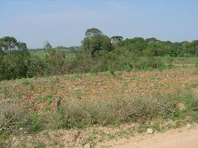 Terreno à venda em Sabiá, Araucária cod:7227-MORO - Foto 3