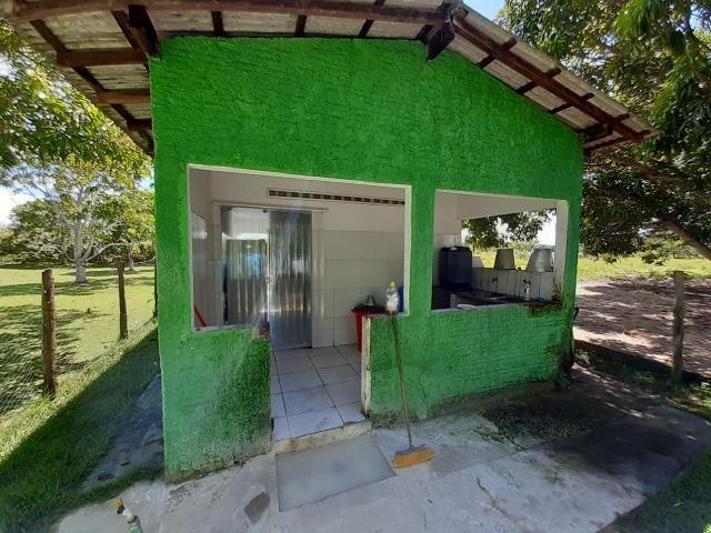 Fazenda com 160 hectares em Mucajai/RR, ler descrição do anuncio - Foto 4