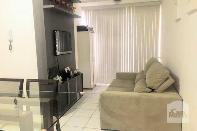Apartamento à venda com 2 dormitórios em Sagrada família, Belo horizonte cod:239686 - Foto 2