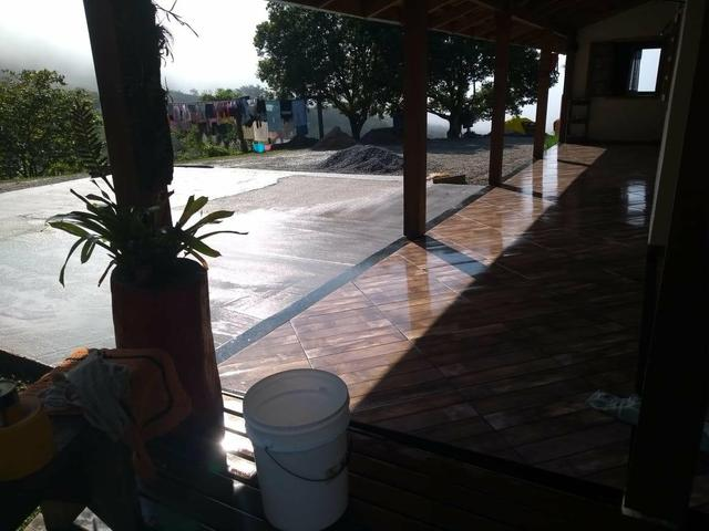 Sítio tifa bom Jesus reflorestamento - Foto 7