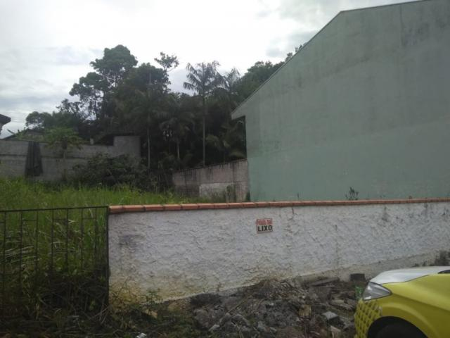 Terreno para alugar com 0 dormitórios em Joao costa, Joinville cod:08769.001 - Foto 3