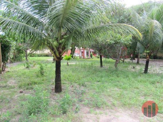 Sítio com 4 dormitórios para alugar, 1600 m² por R$ 1.500,00/mês - Jardim Icaraí - Caucaia - Foto 8