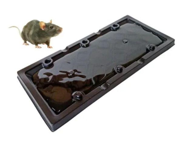 Ratoeira adesiva Cola Rato - Kellmat