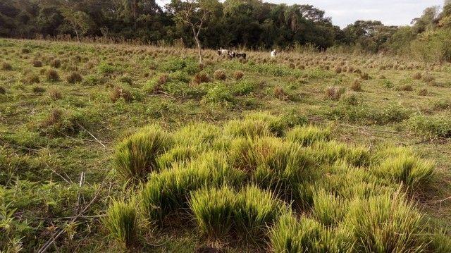 Fazenda/Sítio/Chácara para venda tem 121000 metros quadrados com 4 quartos em Rural - Pora - Foto 6