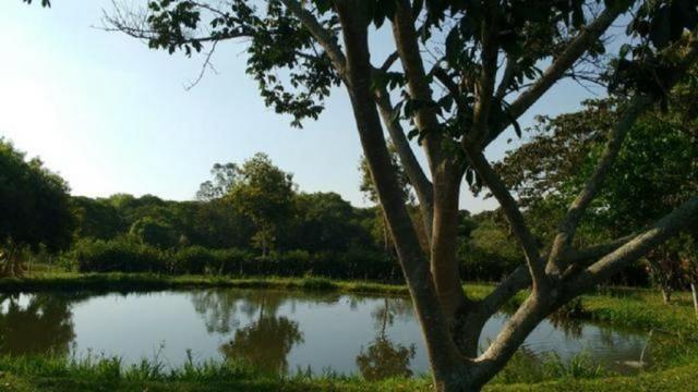 Apartamento à venda com 2 dormitórios em Centro, Cosmópolis cod:321-IM346334OB - Foto 10