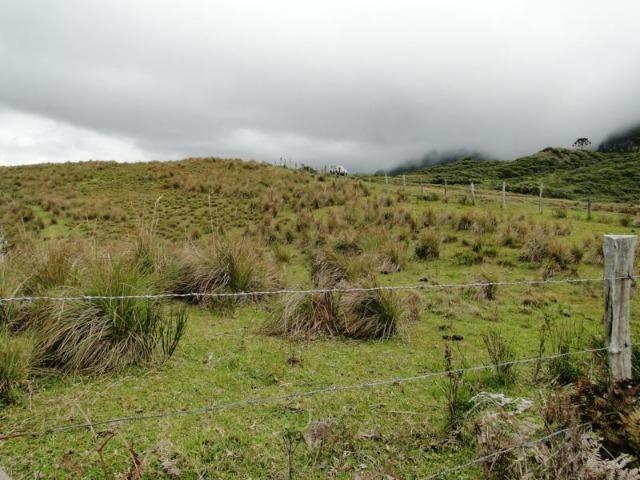 Pense num lugar bonito, sitio 5 hectares a 1000 m de altitude - Foto 15