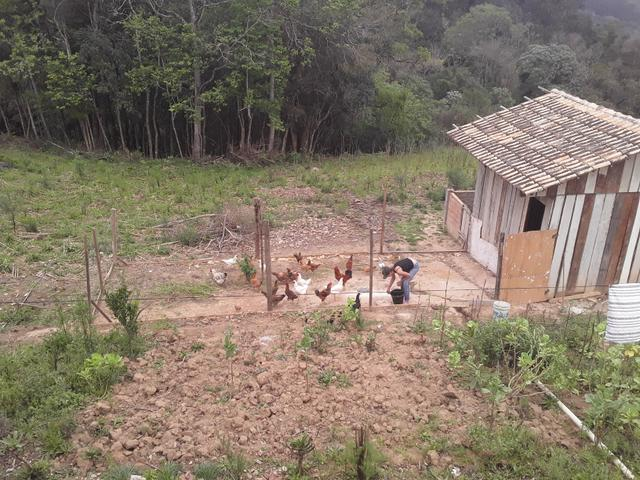 Chácara em quitandinha - Foto 3