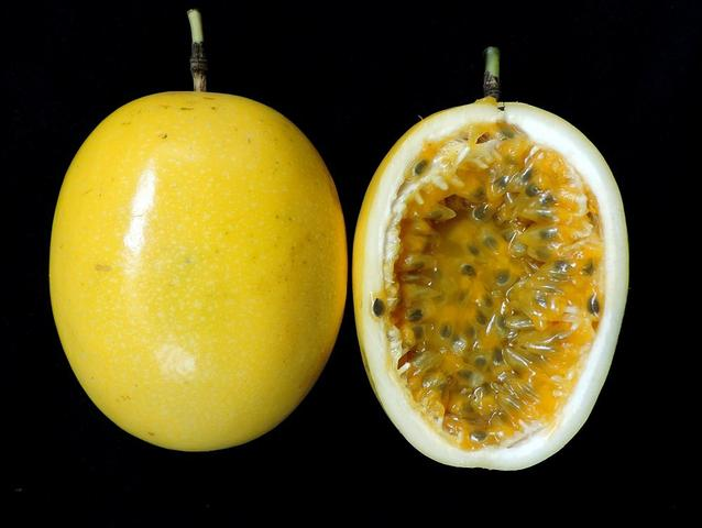 Maracujá kg orgânico sem agrotóxico - Foto 2