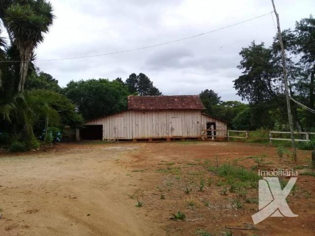 Chácara - venda, 176.055 m² por r$ 1.500.000 - botiatuva - - campo largo - pr - Foto 13