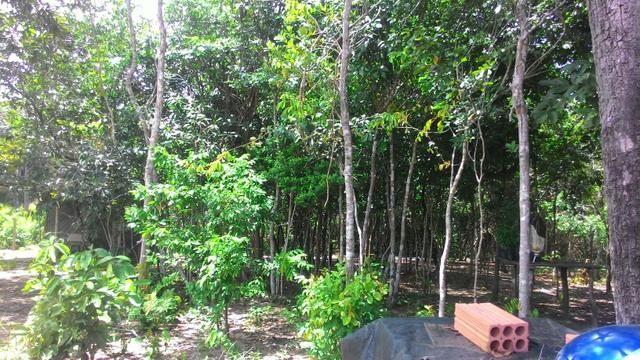 Vendo terreno no cucuruna - Foto 2