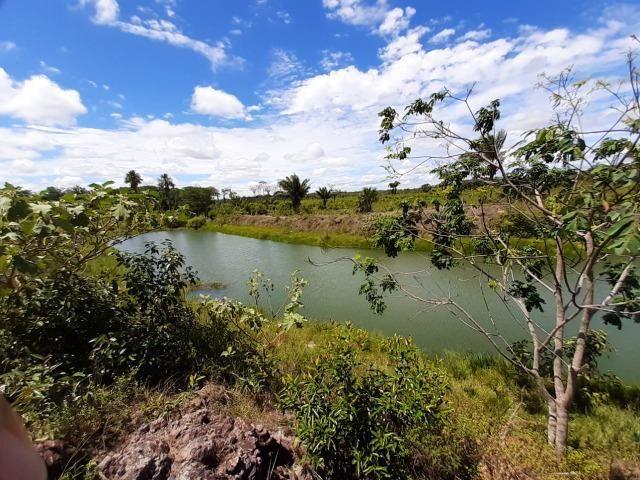 Fazenda com 160 hectares em Mucajai/RR, ler descrição do anuncio - Foto 17