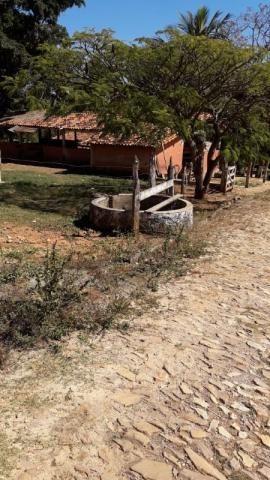 Fazenda à venda, 3 quartos, 3 vagas, Tamanduá - Sete Lagoas/MG - Foto 6