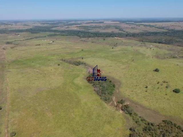 Fazenda rural à venda, á margem da BR 364, Cacoal. - Foto 16