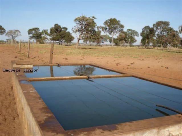 Fazenda em Água Clara - MS - Foto 2