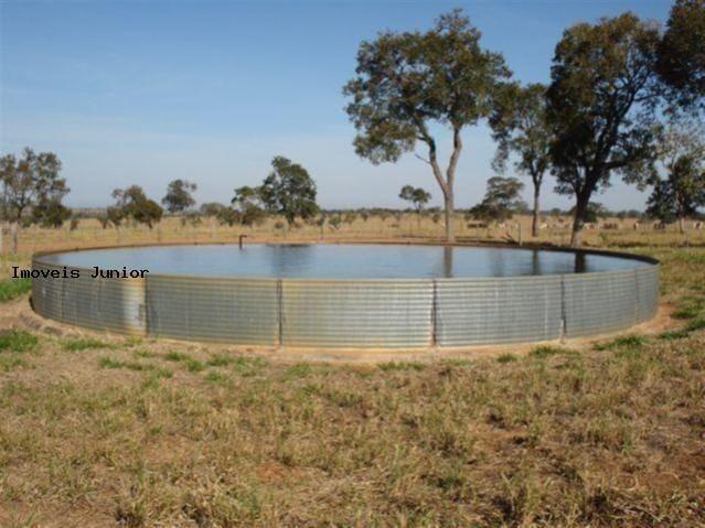 Fazenda em Água Clara - MS - Foto 3
