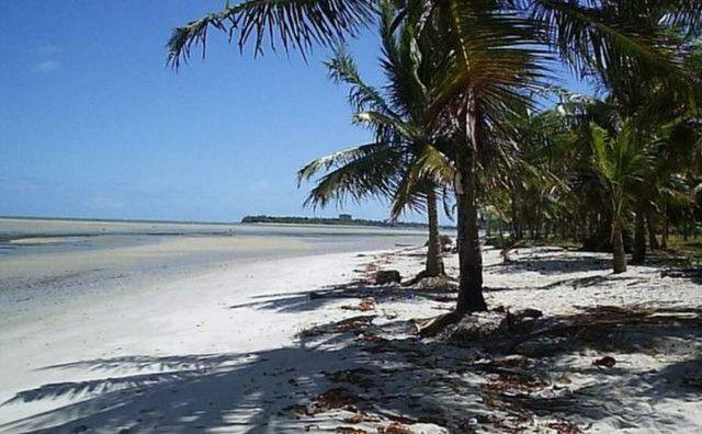 Gavôa Beach Resort Flat ( PRAIA COROA DO AVIÃO) - Foto 10
