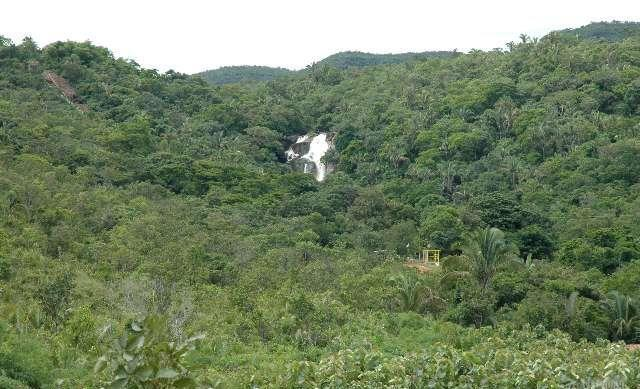 Fazenda serrana, vista para Cachoeira é muita água - Foto 2