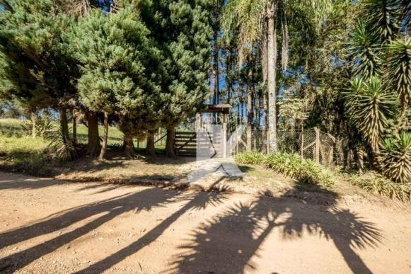 Chácara com 1 dormitório à venda, 60500 m² por r$ 599.000,00 - centro - colombo/pr - Foto 18