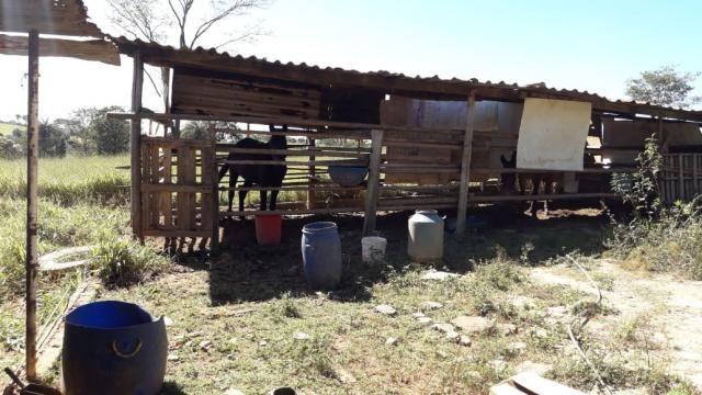 Fazenda à venda, 3 quartos, 3 vagas, Tamanduá - Sete Lagoas/MG - Foto 11