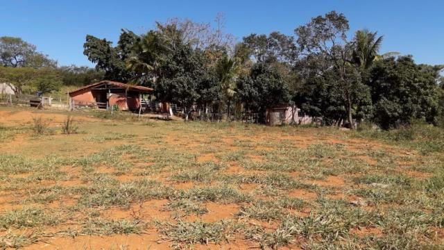 Fazenda à venda, 3 quartos, 3 vagas, Tamanduá - Sete Lagoas/MG - Foto 9
