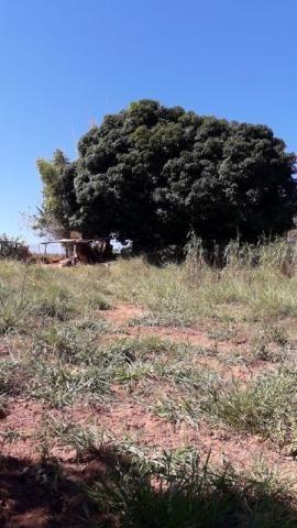 Fazenda à venda, 3 quartos, 3 vagas, Tamanduá - Sete Lagoas/MG - Foto 5