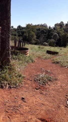 Fazenda à venda, 3 quartos, 3 vagas, Tamanduá - Sete Lagoas/MG - Foto 8