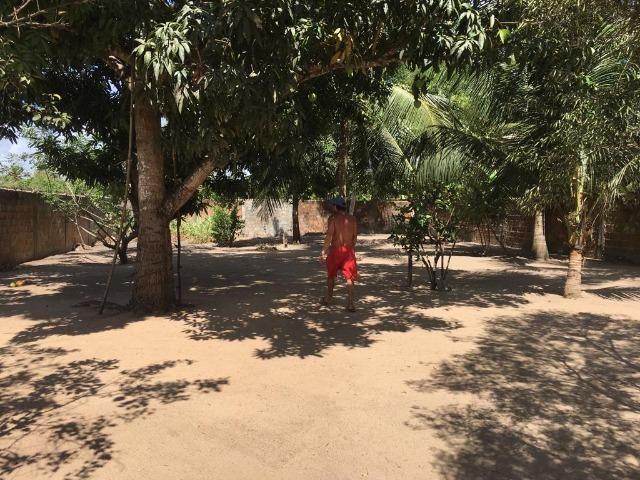 Vendo Granja em Monte Alegre- Casa sede com 3 quartos- Com dependência - Foto 4