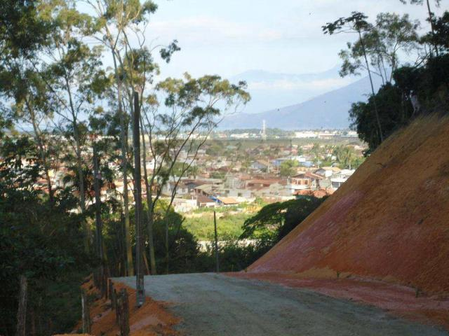 Terreno à venda em Poiares, Caraguatatuba cod:547 - Foto 4