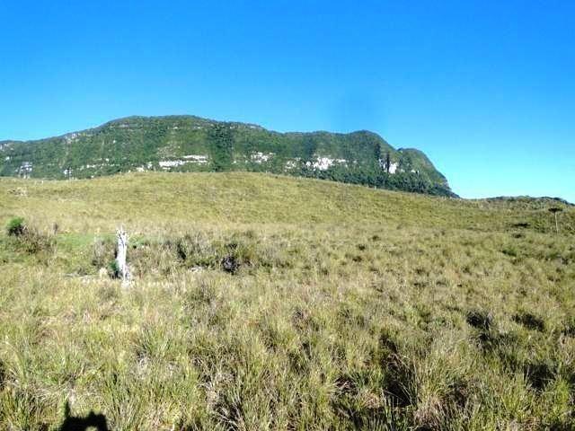 Pense num lugar bonito, sitio 5 hectares a 1000 m de altitude - Foto 5