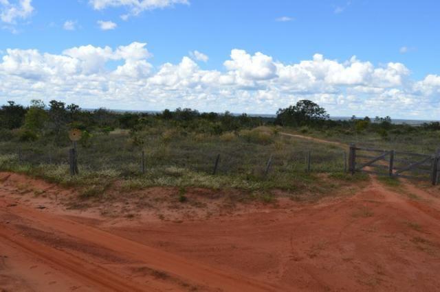 7800 hectares, Primavera do Leste-MT - Foto 4