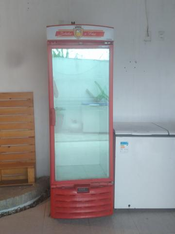 Vendo Freezer vertical Metal Frio