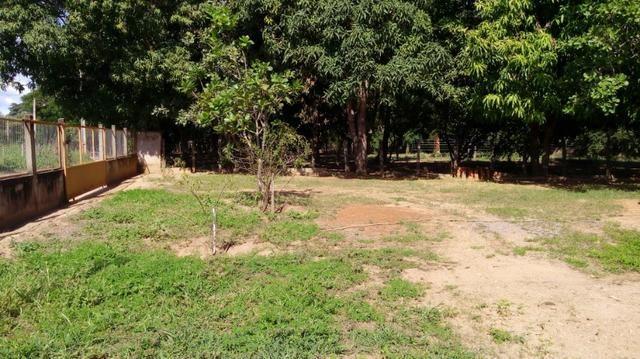 Casa/Rancho na beira do Rio Paranã - Foto 2
