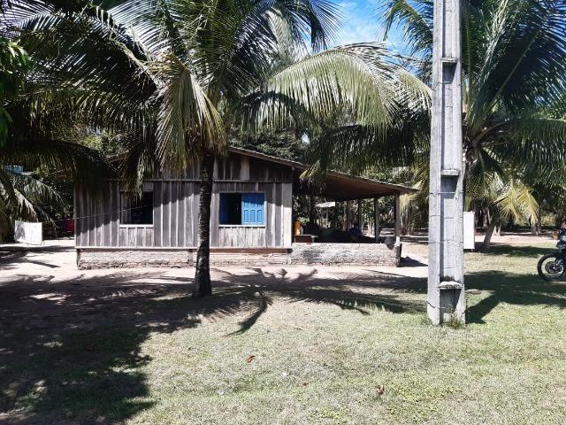 Fazenda com 160 hectares em Mucajai/RR, ler descrição do anuncio - Foto 3