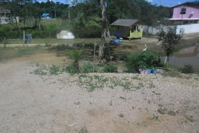 Vende-se chácara em Areia Branca dos Assis - Mandirituba (cód. A199) - Foto 3
