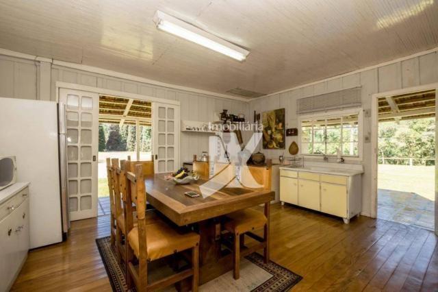 Chácara com 1 dormitório à venda, 60500 m² por r$ 599.000,00 - centro - colombo/pr - Foto 9