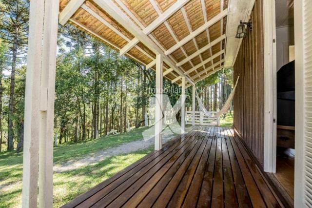 Chácara com 1 dormitório à venda, 60500 m² por r$ 599.000,00 - centro - colombo/pr - Foto 5