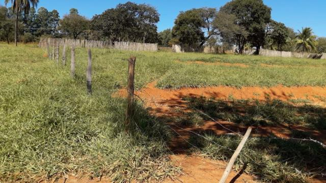 Fazenda à venda, 3 quartos, 3 vagas, Tamanduá - Sete Lagoas/MG - Foto 10