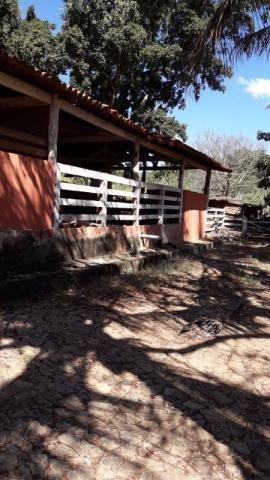 Fazenda à venda, 3 quartos, 3 vagas, Tamanduá - Sete Lagoas/MG - Foto 2