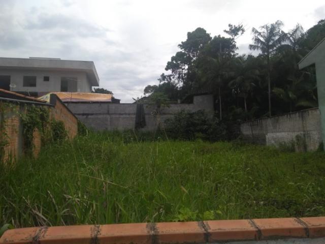 Terreno para alugar com 0 dormitórios em Joao costa, Joinville cod:08769.001 - Foto 4