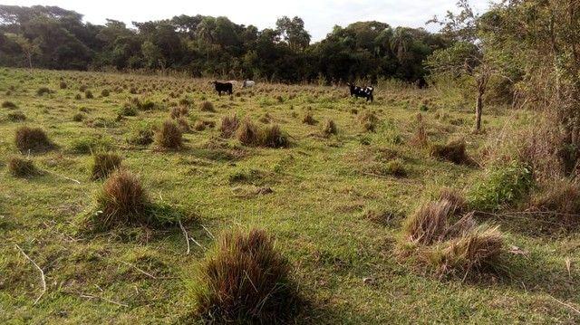 Fazenda/Sítio/Chácara para venda tem 121000 metros quadrados com 4 quartos em Rural - Pora - Foto 8
