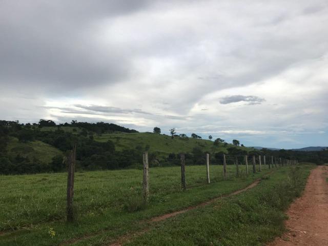 Fazenda para pecuária de 146 alqueires