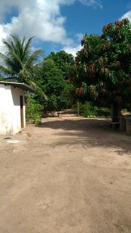 Vendo Granja em Monte Alegre- Casa sede com 3 quartos- Com dependência