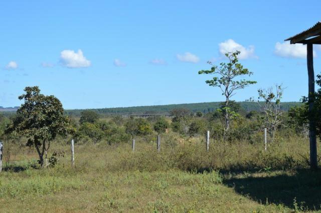 7800 hectares, Primavera do Leste-MT - Foto 6