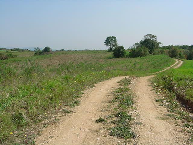 Terreno à venda em Sabiá, Araucária cod:7227-MORO - Foto 7