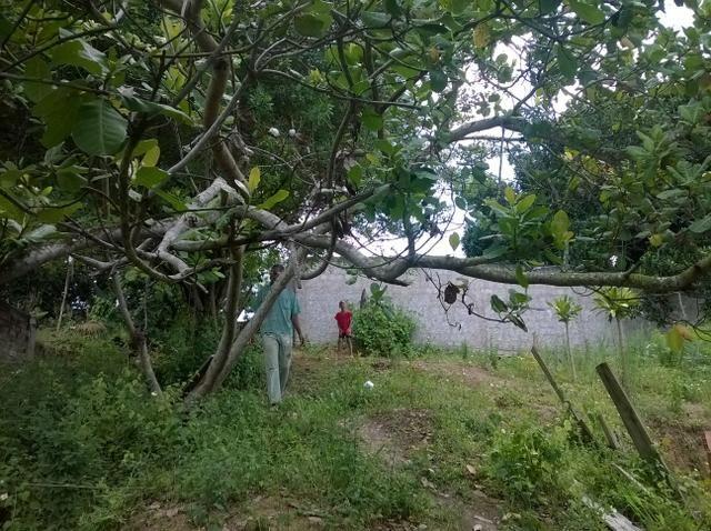 Oportunidade terreno em Águas Claras 6,9x13m R$ 8.500,00