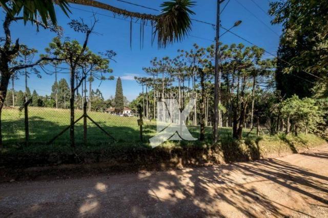 Chácara com 1 dormitório à venda, 60500 m² por r$ 599.000,00 - centro - colombo/pr - Foto 20