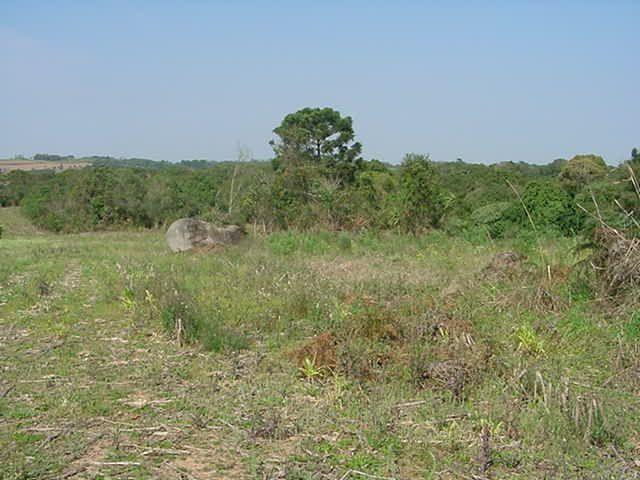 Terreno à venda em Sabiá, Araucária cod:7227-MORO - Foto 6