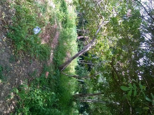 Oportunidade terreno em Águas Claras 6,9x13m R$ 8.500,00 - Foto 4